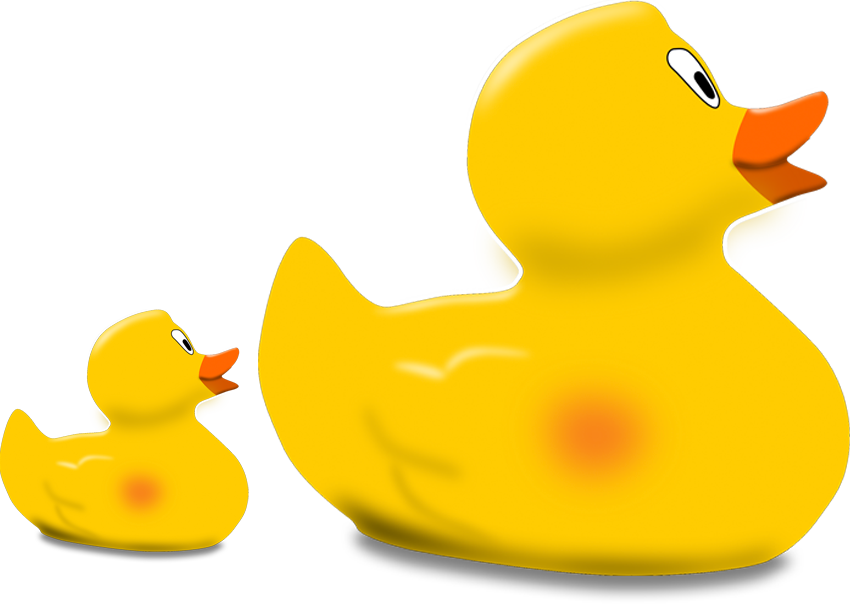 Rubber duckies following